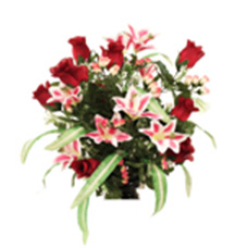 Rose Lily Mix