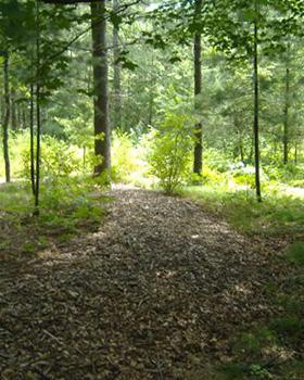 cremation trail